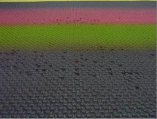snapshot-2008-03-03-08-51-04.jpg