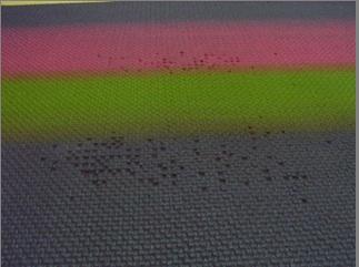 snapshot-2008-03-03-08-51-29.jpg