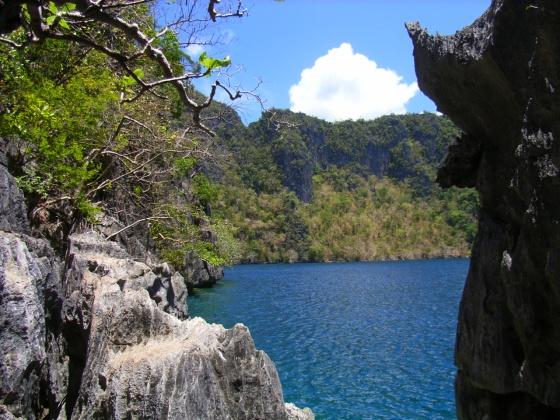 Barracuda Lake in Coron